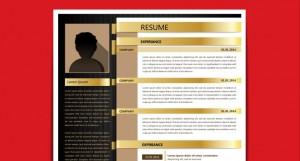 cv de traductor freelance