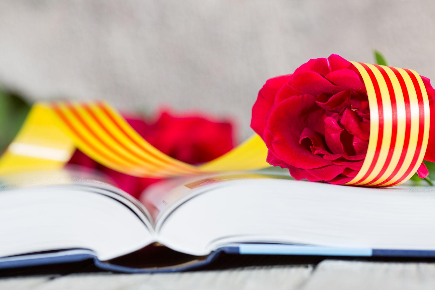 Rosa y libro.