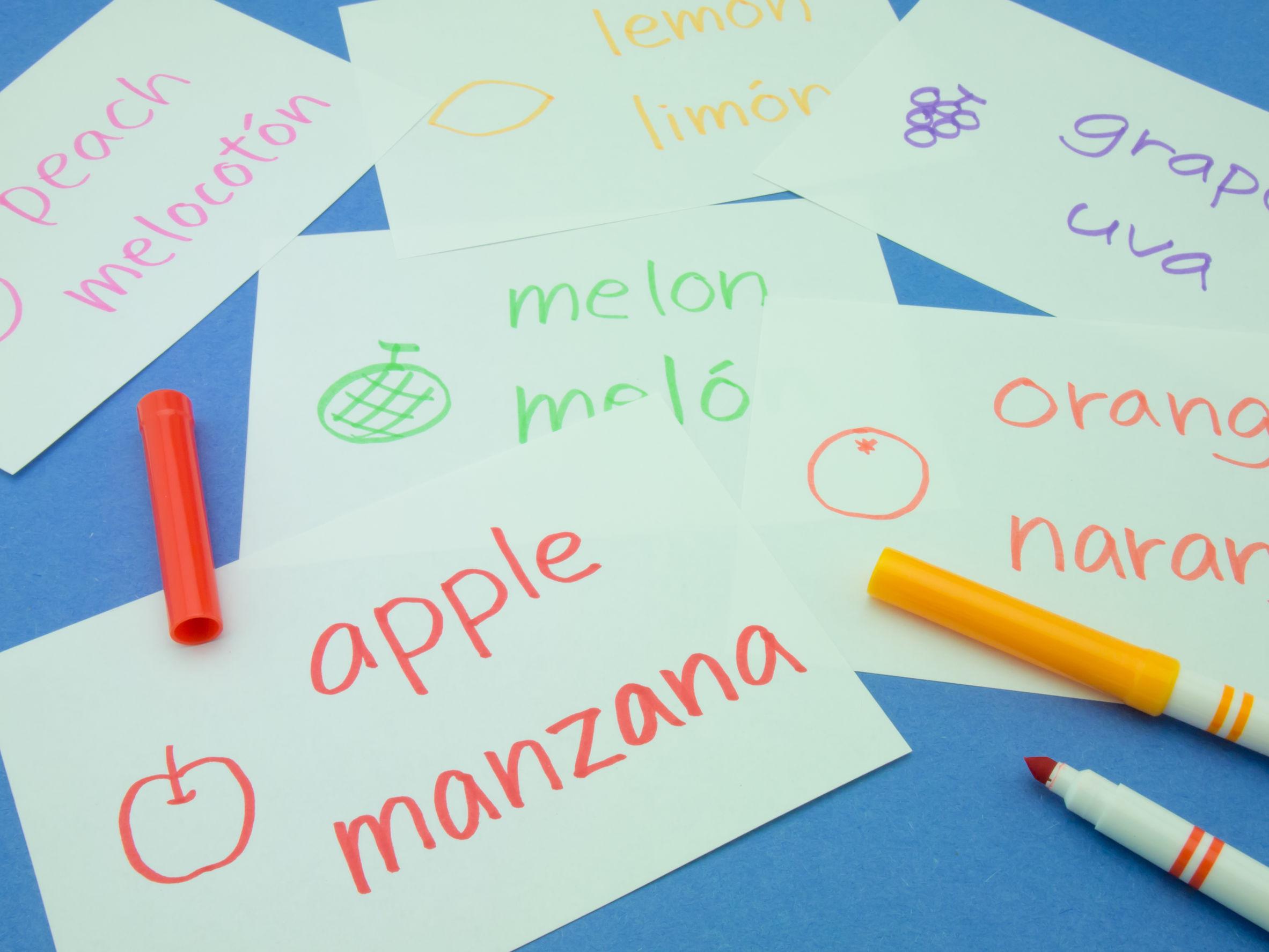 ¿Existe el bilingüismo absoluto?
