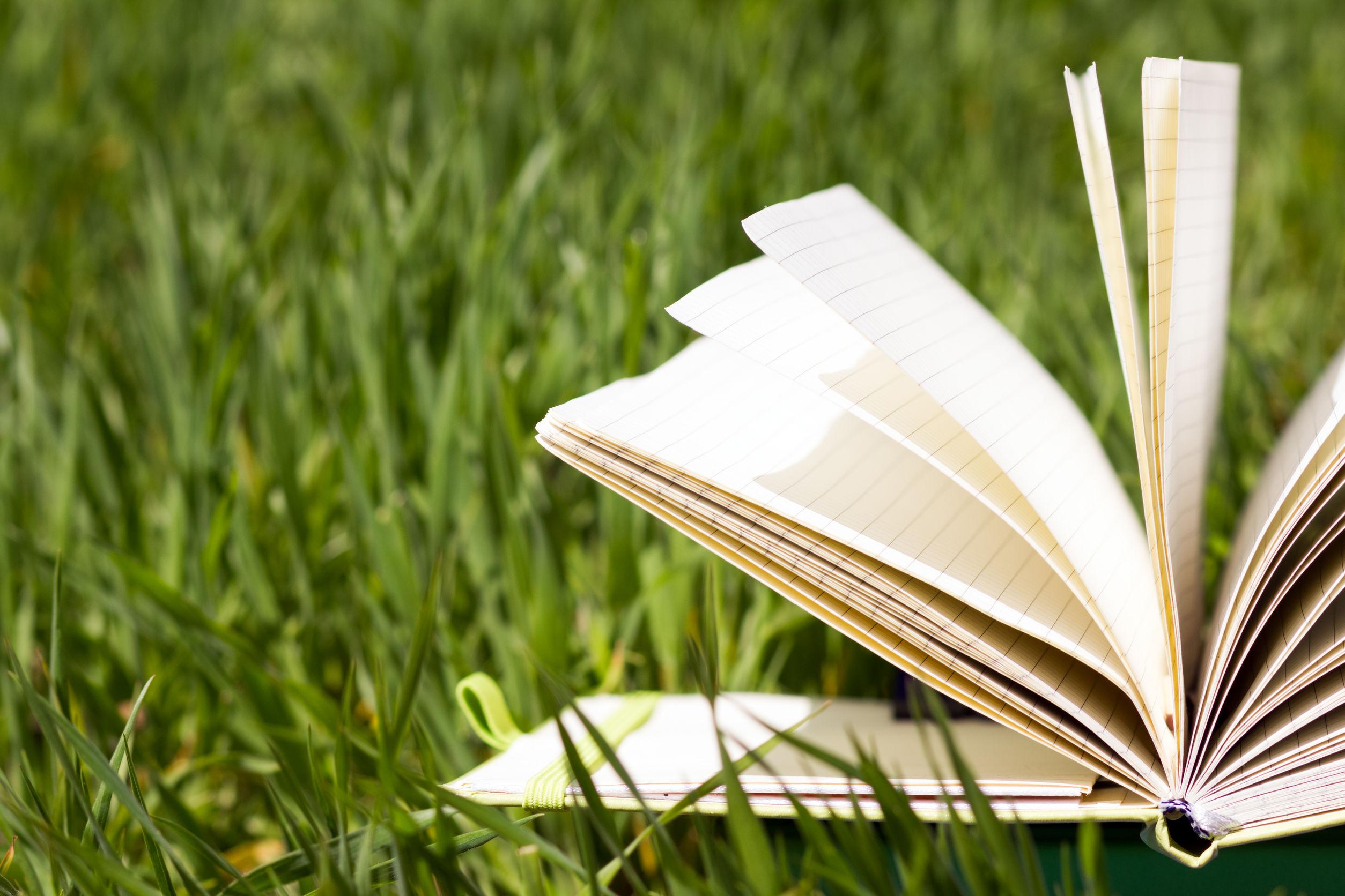 cursos de verano de lengua y traducción