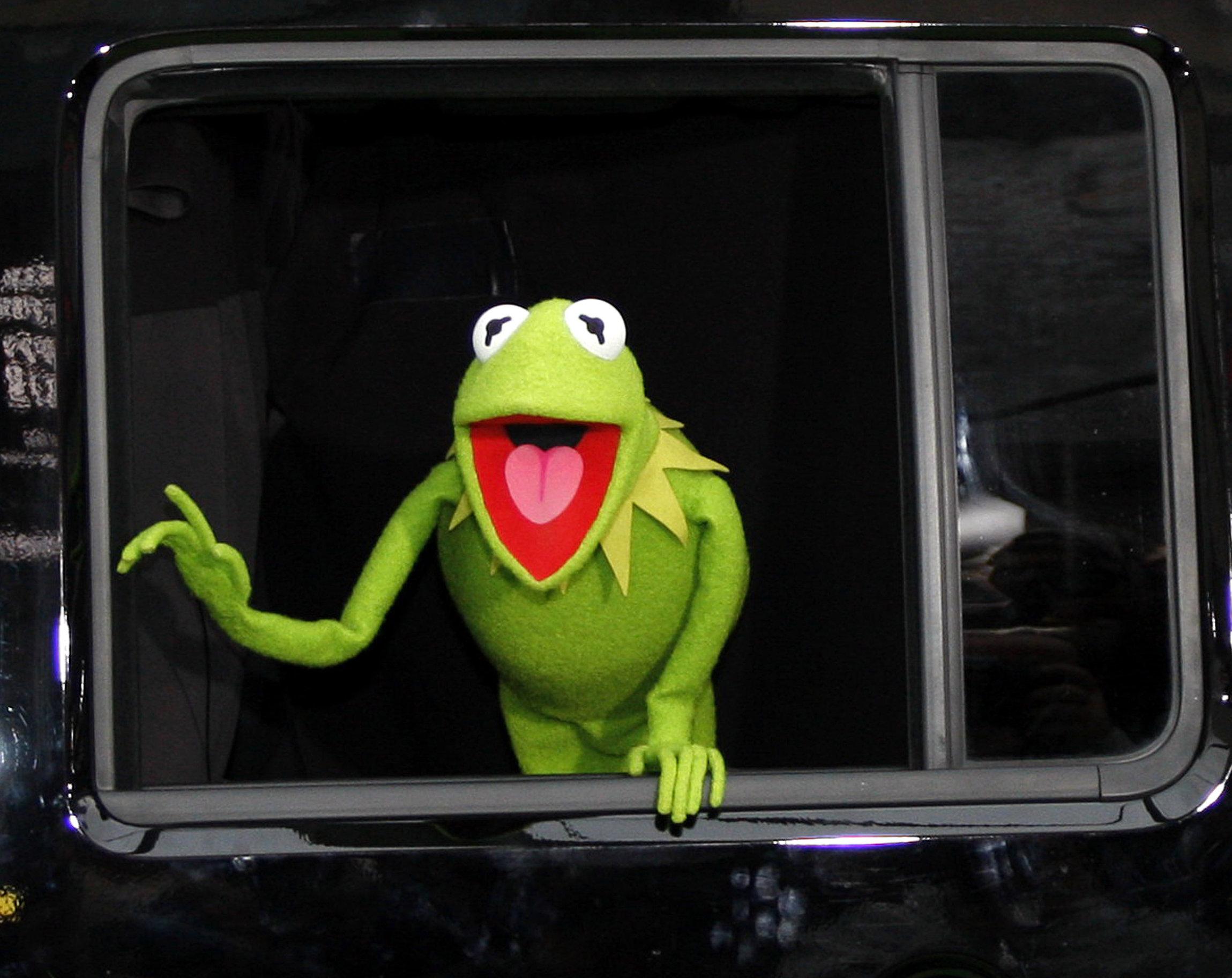 Kermit-René-o-Gustavo